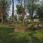 Landscaping at the Grant-Sawyer Home